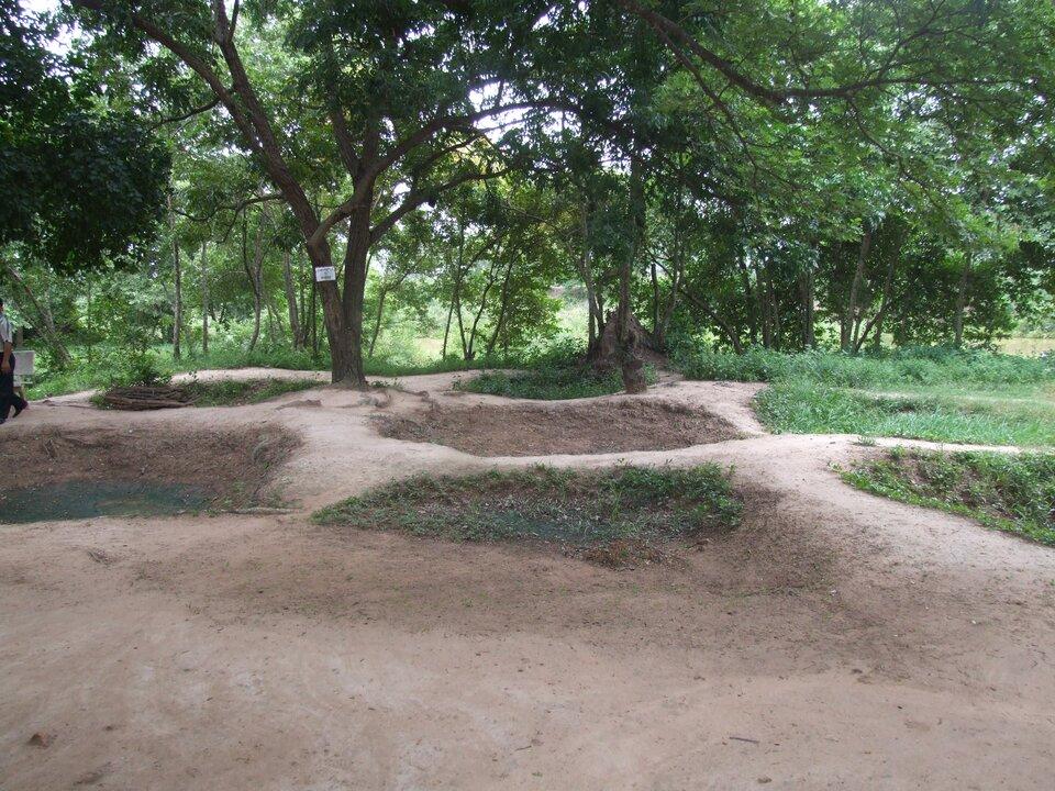 Na zdjęciu masowe groby. Piaszczyste pagórki porośnięte trawą. Ztyłu drzewa.