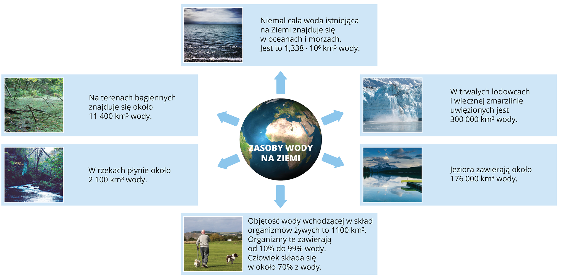 Ilustracja przedstawia schemat zasobów wodnych Ziemi. Wcentrum infografiki kula ziemska zwidoczną Afryką iEuropą, na jej tle napis Zasoby wody na Ziemi. Od kuli ziemskiej odchodzi sześć koncentrycznie rozmieszczonych niebieskich strzałek prowadzących do sześciu niebieskich prostokątów. Każdy zprostokątów ma zdjęcie itekst. Kolejno od góry, licząc wkierunku zgodnym zruchem wskazówek zegara są to: Zdjęcie morza, napis Niemal cała woda istniejąca na Ziemi znajduje się woceanach imorzach. Zdjęcie lodowca, napis: Wtrwałych lodowcach iwiecznej zmarzlinie uwięzionych jest trzysta tysięcy kilometrów sześciennych wody. Zdjęcie jeziora, napis: Jeziora zawierają około 176 tysięcy kilometrów sześciennych wody. Zdjęcie człowieka ipsa na łące, napis: Objętość wody wchodzącej wskład organizmów żywych to tysiąc sto kilometrów sześciennych. Organizmy te zawierają od 10 do 99 procent wody. Człowiek składa się wokoło 70 procent zwody. Zdjęcie rzeki wlesie, napis: Wrzekach płynie około 2 tysiące sto kilometrów sześciennych wody. Zdjęcie mokradła, napis: Na terenach bagiennych znajduje się około 11 tysięcy czterysta kilometrów sześciennych wody.