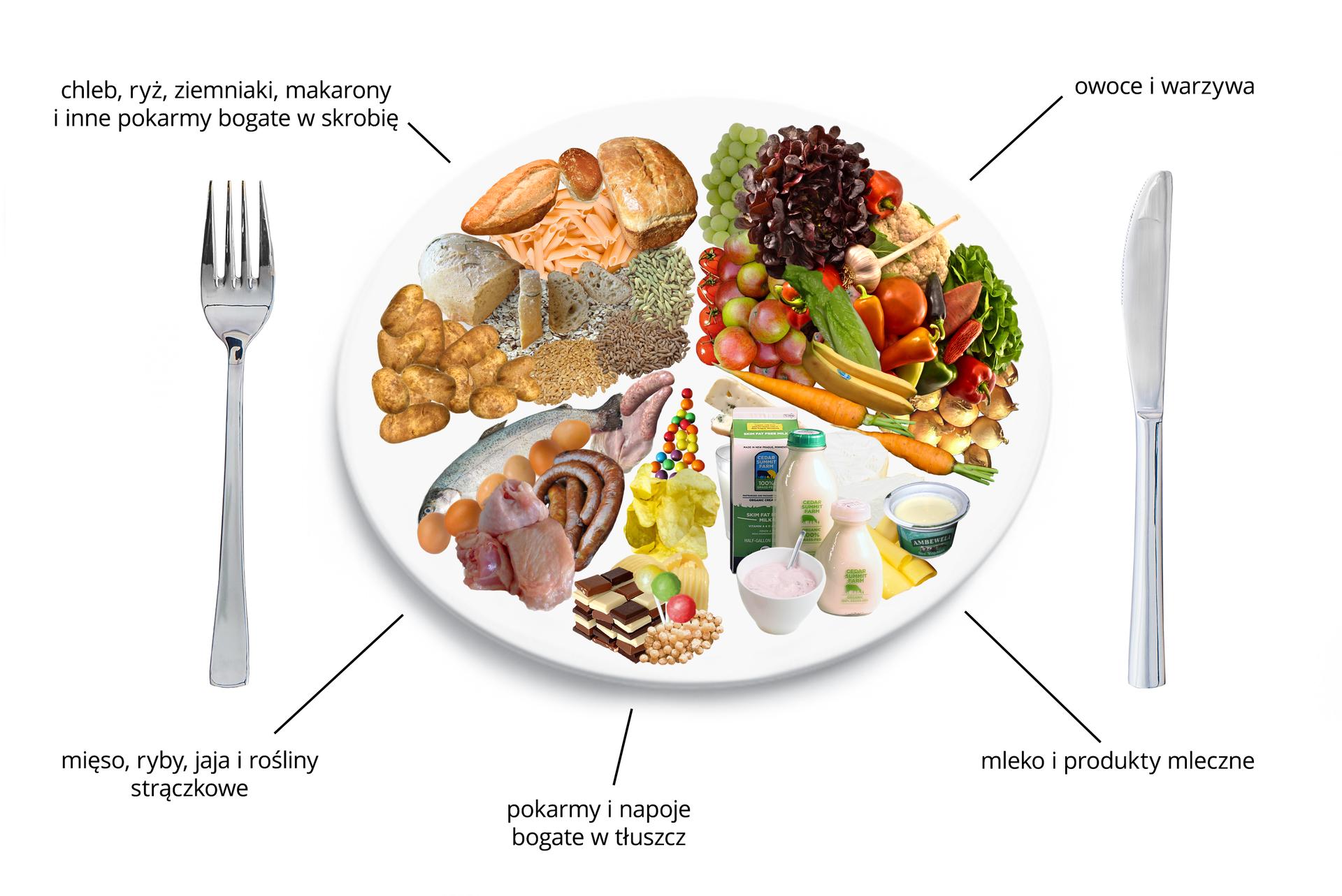 Schemat przedstawiający talerz zdrowego żywienia zróżnymi produktami żywnościowymi. Talerz podzielono na pięć nierównych części, odzwierciedlających proporcje pokarmów, jakie powinny wchodzić wskład naszej diety. Największą część talerza stanowią: zboża, chleb, ziemniaki ipokarmy bogate wskrobię. Następna równie duża część, to owoce iwarzywa. Kolejna mniejsza niż ćwiartka talerza to, nabiał. Następna mięso, ryby, jaja irośliny strączkowe. Najmniejsza cześć talerza, to pokarmy inapoje bogate wtłuszcz.