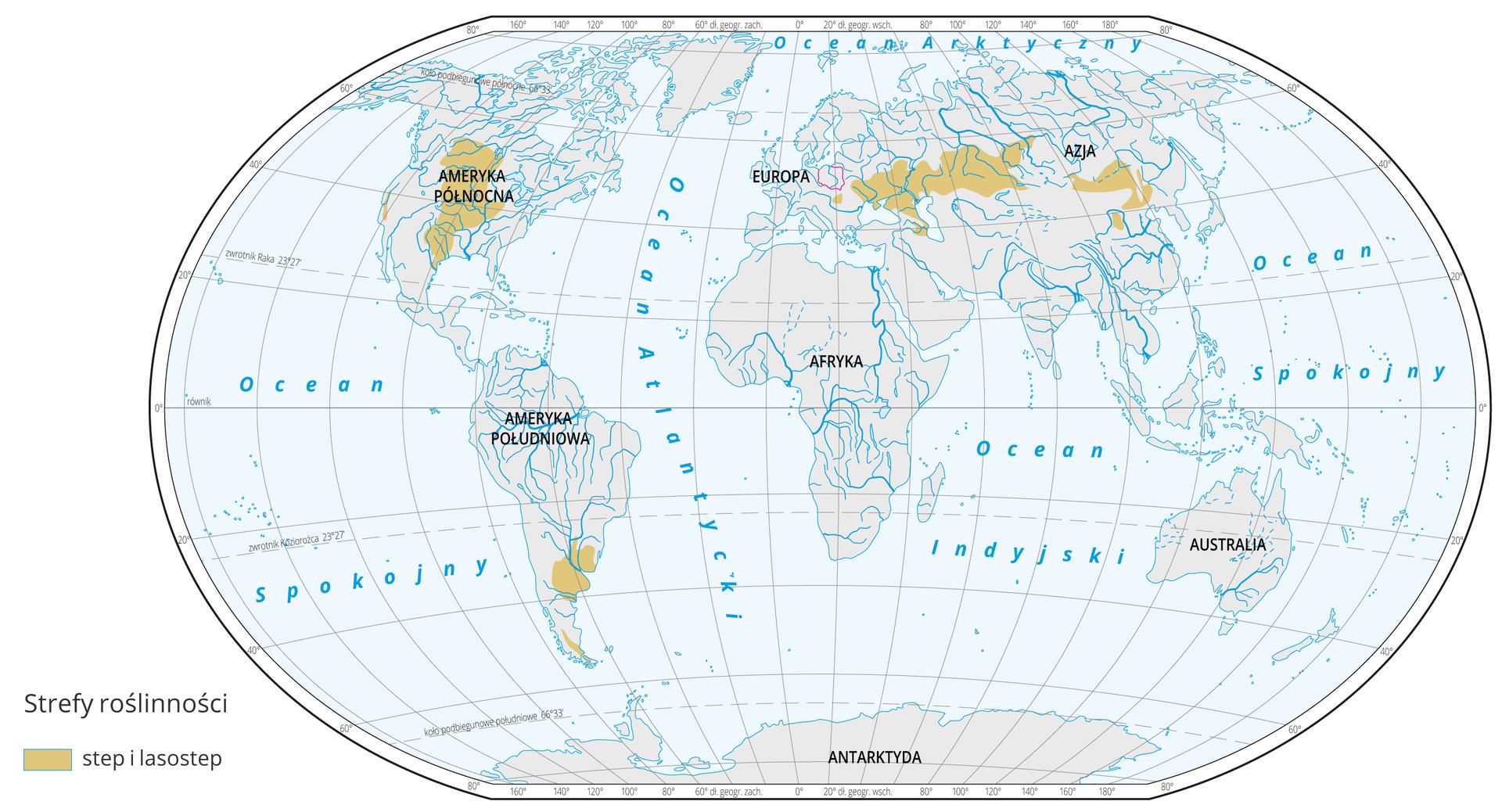 Mapa świata prezentuje występowanie stepu ilasostepu na Ziemi. Step ilasostep oznaczono kolorem brązowym na mapie. Step występują w: Środkowej Europie, Europie Południowo-Wschodniej, Azji Środkowej, Środkowej Ameryce Północnej, Ameryce Południowej.