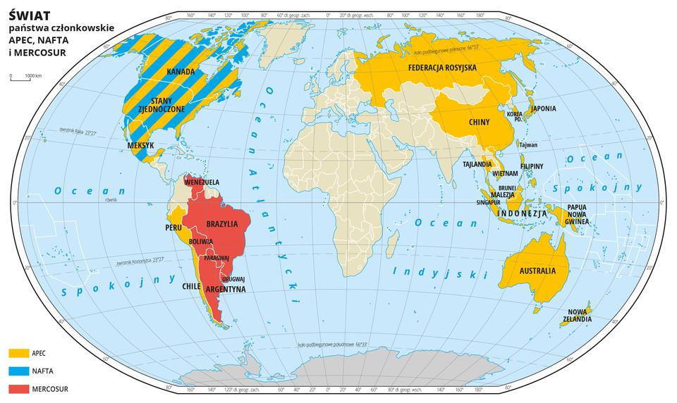 Ilustracja przedstawia mapę świata. Wody zaznaczono kolorem niebieskim. Opisano oceany.Na mapie za pomocą kolorów (żółty, niebieski, czerwony) oznaczono odpowiednio państwa członkowskie APEC, NAFTA iMERCOSUR. WAmeryce Północnej przeplata się kolor żółty iniebieski – APEC iNAFTA, na prawie całym obszarze Ameryki Południowej jest kolor czerwony – MERCOSUR, Federacja Rosyjska iChiny oraz Wschodnia część Azji, Archipelag Malajski iAustralia pokryte są kolorem żółtym – APEC. Wszystkie państwa będące członkami wymienionych organizacji opisano.Mapa pokryta jest równoleżnikami ipołudnikami. Dookoła mapy wbiałej ramce opisano współrzędne geograficzne co dwadzieścia stopni.Po lewej stronie mapy objaśniono kolory użyte na mapie.