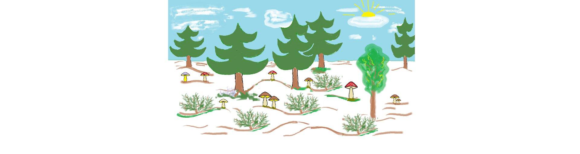 Ilustracja przedstawiająca las zgrzybami