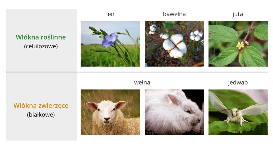 Rodzaje włókien naturalnych
