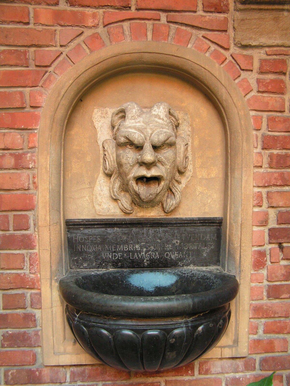 Ilustracja przedstawia ornament – maszkaron. Element przedstawia twarz człowieka/bestii ijest przymocowana do ściany. Pod figurą zwaną maszkaronem znajduje się ciemne naczynie.