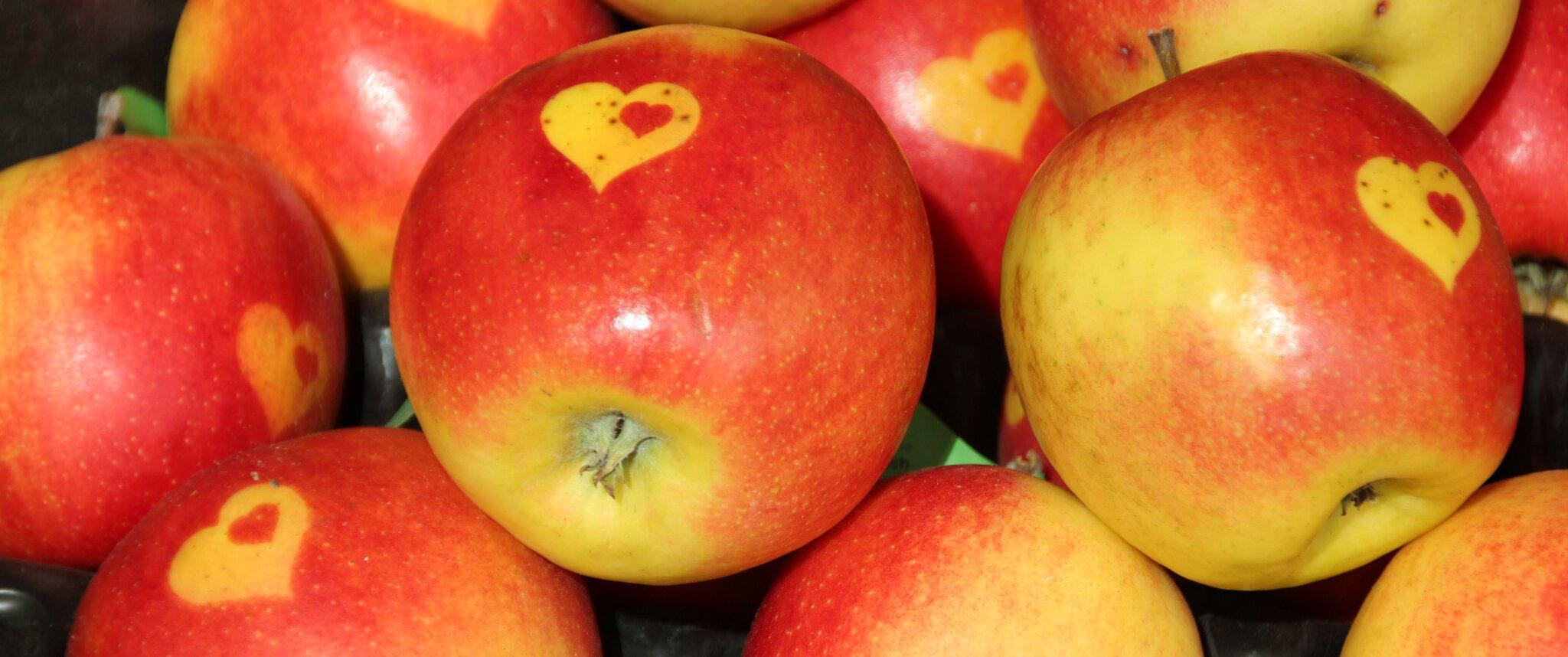 Jabłko Źródło: licencja: CC 0.