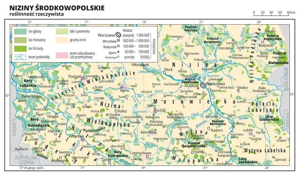 Ilustracja przedstawia fragment mapy Polski obejmujący Niziny Środkowopolskie, na którym przedstawiono roślinność rzeczywistą. Na mapie przeważa kolor beżowy obrazujący grunty orne, na którym równomiernie rozmieszczone są małe plamy koloru zielonego obrazujące występowanie lasów iglastych (kolor ciemnozielony), lasów liściastych (kolor jasnozielony), łąk ipastwisk (kolor bardzo jasny zielony). Oznaczono iopisano miasta, rzeki ijeziora. Opisano pojezierza, niziny, wyżyny igóry oraz państwa sąsiadujące zPolską. Podpisano również większe kompleksy leśne, jak Bory Dolnośląskie, Puszcza Białowieska itym podobne. Największe skupisko lasów iglastych występuje wrejonie Zielonej Góry. Wobrębie dużych miast kolorem różowym oznaczono tereny zabudowane lub przemysłowe. Dookoła mapy wbiałej ramce opisano współrzędne geograficzne co dwa stopnie. Wlegendzie mapy objaśniono znaki ibarwy użyte na mapie.
