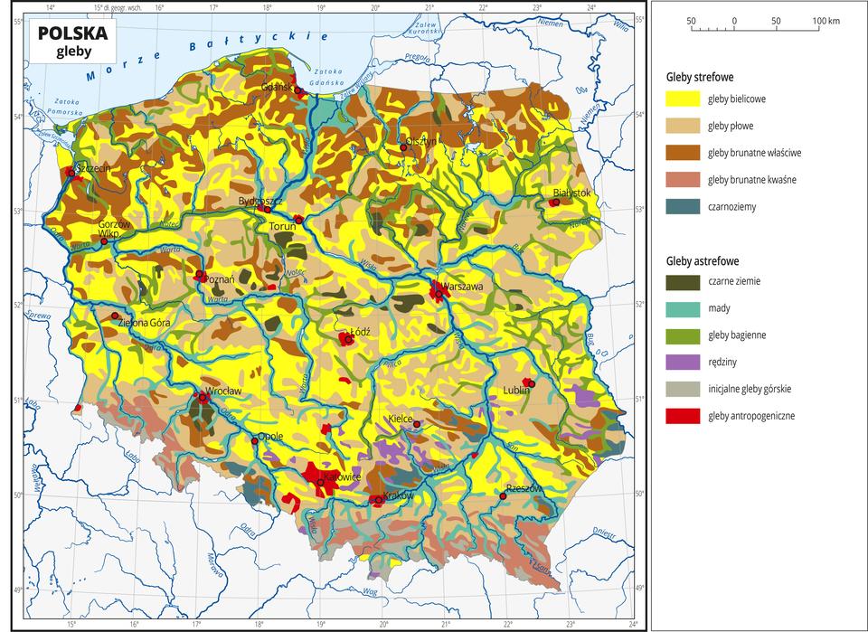Ilustracja przedstawia mapę Polski. Na mapie kolorami zaznaczono typy gleb. Centralną część Polski zajmują gleby bielicowe oznaczone kolorem żółtym igleby płowe oznaczone kolorem beżowym. Na północy przeważają gleby brunatne właściwe ikwaśne oznaczone dwoma odcieniami koloru brązowego. Wzdłuż rzek występują mady (kolor turkusowy) igleby bagienne (kolor zielony). Czerwonymi kropkami zaznaczono miasta wojewódzkie. Opisano rzeki. Po prawej stronie mapy wlegendzie umieszczono wpionie jedenaście kolorowych prostokątów, które opisano nazwami gleb. Wydzielono pięć rodzajów gleb strefowych: bielicowe, płowe, brunatne właściwe, brunatne kwaśne iczarnoziemy oraz sześć rodzajów gleb astrefowych: czarne ziemie, mady, gleby bagienne, rędziny, inicjalne gleby górskie igleby antropogeniczne. Gleby astrefowe rozmieszczone są nierównomiernie, gleby antropogeniczne występują wokół miast.
