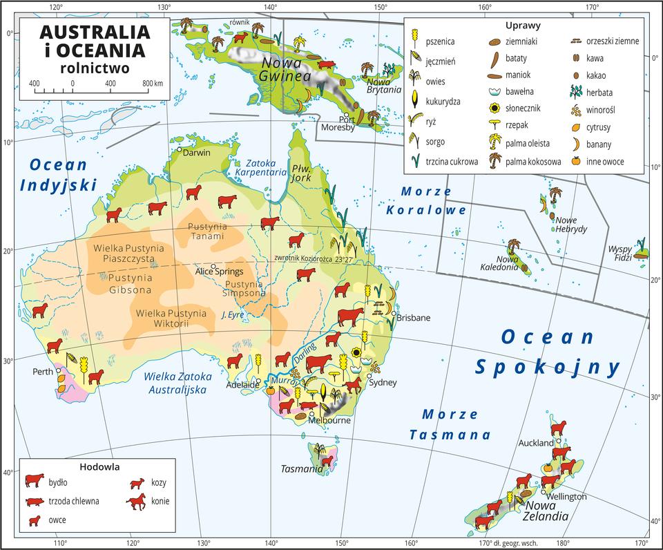 Ilustracja przedstawia mapę rolnictwa Australii iOceanii. Na mapie sygnaturami przedstawiono główne uprawy. Wcentrum ina wschodzie Australii pustynie ipółpustynie (brak upraw). Dookoła sawanna (hodowla bydła, owiec ikóz). Na wschodnim wybrzeżu tereny uprawne (pszenica, jęczmień, owies, kukurydza, ryż, sorgo, trzcina cukrowa, ziemniaki, orzeszki ziemne) ihodowla (bydło, trzoda chlewna, owce, kozy ikonie). Na najdalej wysuniętych na południe krańcach kontynentu uprawa cytrusów iinnych owoców. Na Nowej Gwinei uprawa batatów, bananów, kawy, kakao, palm oleistych ikokosowych. Na Nowej Zelandii przeważa hodowla owiec ikóz. Na mapie południki irównoleżniki. Dookoła mapy wbiałej ramce opisano współrzędne geograficzne co dziesięć stopni. Wlegendzie umieszczono iopisano kolory użyte na mapie.