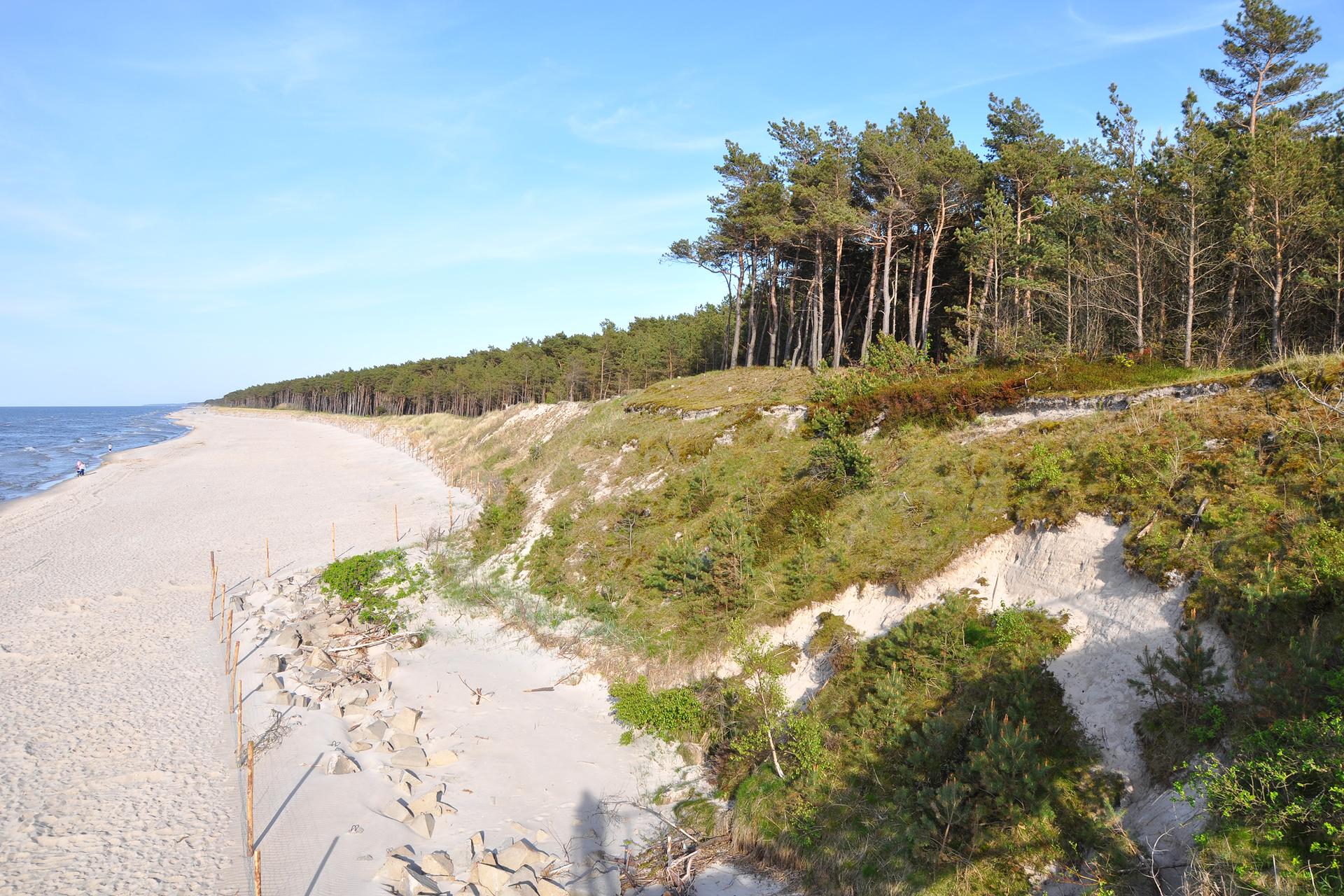 Fotografia prezentuje fragment pobrzeża zplażą oraz klifami. Na klifie rosną liczne drzewa iglaste.