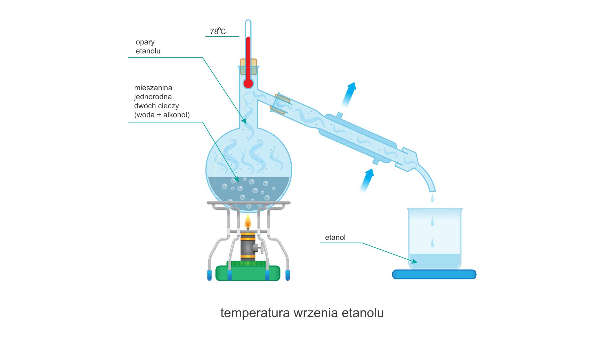 Ilustracja przedstawia zestaw do destylacji zwłączonym palnikiem. Termometr wkolbie wskazuje temperaturę 78 stopni Celsjusza, zawartość kolby podpisana jest mieszanina jednorodna dwóch cieczy (woda + alkohol), aopary wkolbie ichłodnicy podpisane są jako: opary etanolu. Przy przyłączach wody wkolbie znajdują się strzałki określające kierunek przepływu wody. Dolne przyłącze pełni rolę wlotu, agórne wylotu. Zkońca wylotowego chłodnicy do zlewki kapią krople cieczy zbierającej się wzlewce. Płyn ten oznaczony jest jako: etanol. Cały rysunek nosi podpis: temperatura wrzenia etanolu.