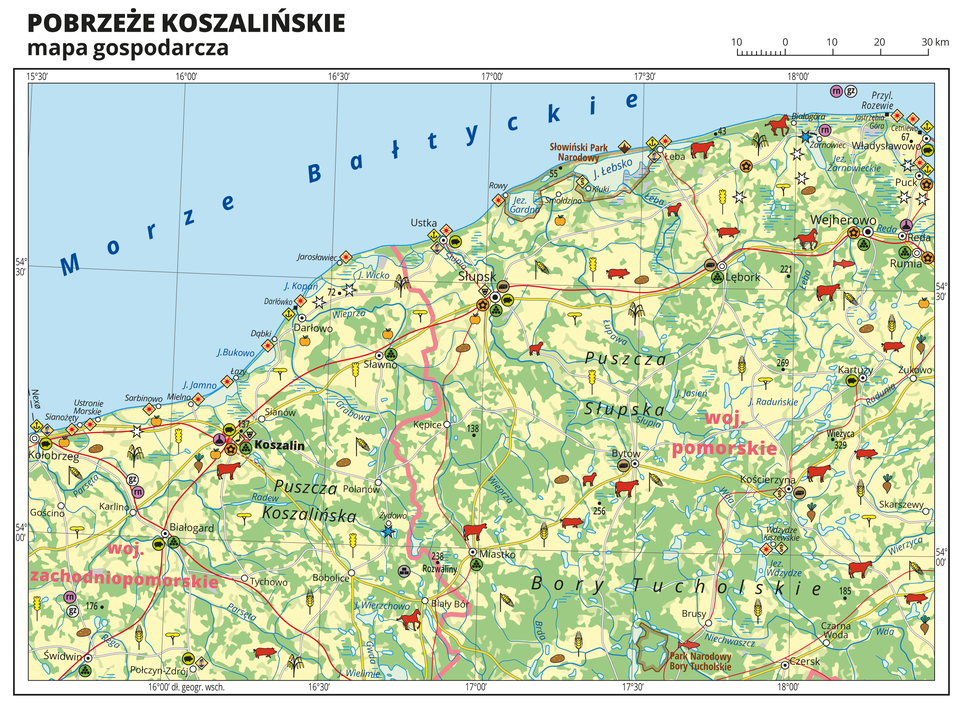 Ilustracja przedstawia mapę gospodarczą Pobrzeża Koszalińskiego. Tło mapy wkolorze żółtym (grunty orne), jasnozielonym (łąki ipastwiska) izielonym (lasy). Na mapie sygnatury obrazujące uprawy poszczególnych roślin, hodowlę zwierząt, przemysł, górnictwo ienergetykę, komunikację, turystykę, naukę, kulturę isztukę. Na północy Morze Bałtyckie. Mapa obejmuje tereny od Kołobrzegu na zachodzie po Władysławowo na wschodzie. Miejscowości nadmorskie oznaczone sygnaturą turystyki wypoczynkowej. Największe zagęszczenie pozostałych sygnatur wKoszalinie, duże zagęszczenie sygnatur wSłupsku. Na mapie przedstawiono sieć dróg ikolei, porty wodne ilotnicze, granice województw. Opisano województwo zachodniopomorskie iwojewództwo pomorskie. Opisano kompleksy leśne iparki narodowe. Mapa zawiera południki irównoleżniki, dookoła mapy wbiałej ramce opisano współrzędne geograficzne co trzydzieści minut.