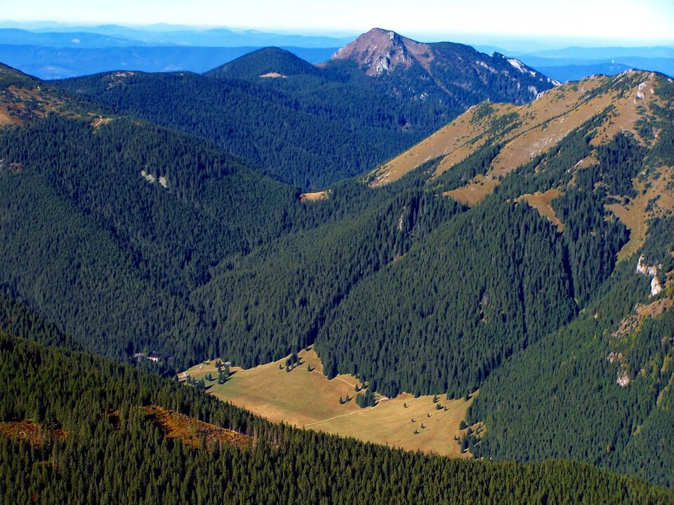Na zdjęciu U-kształtna dolina, dno doliny szerokie, zbocza łagodne, zalesione.