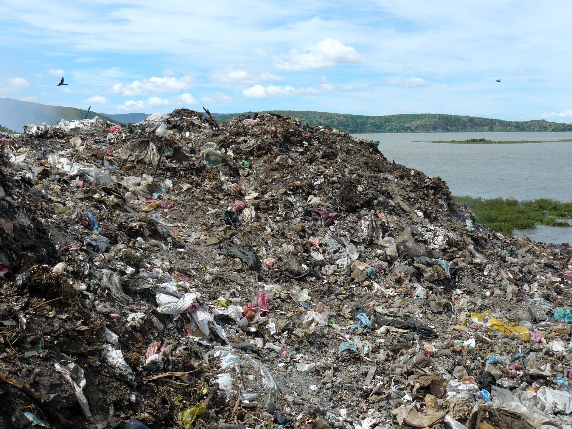 Zdjęcie przedstawia dzikie wysypisko śmieci. Na pierwszym planie znajduje się spore wzgórze usypane znieposortowanych odpadów, nad którym unoszą się ptaki. Daleko wtle wzgórza, niebieskie niebo. Pomiędzy wysypiskiem, awzgórzami widoczna jest tafla dużego jeziora lub morskiej zatoki.