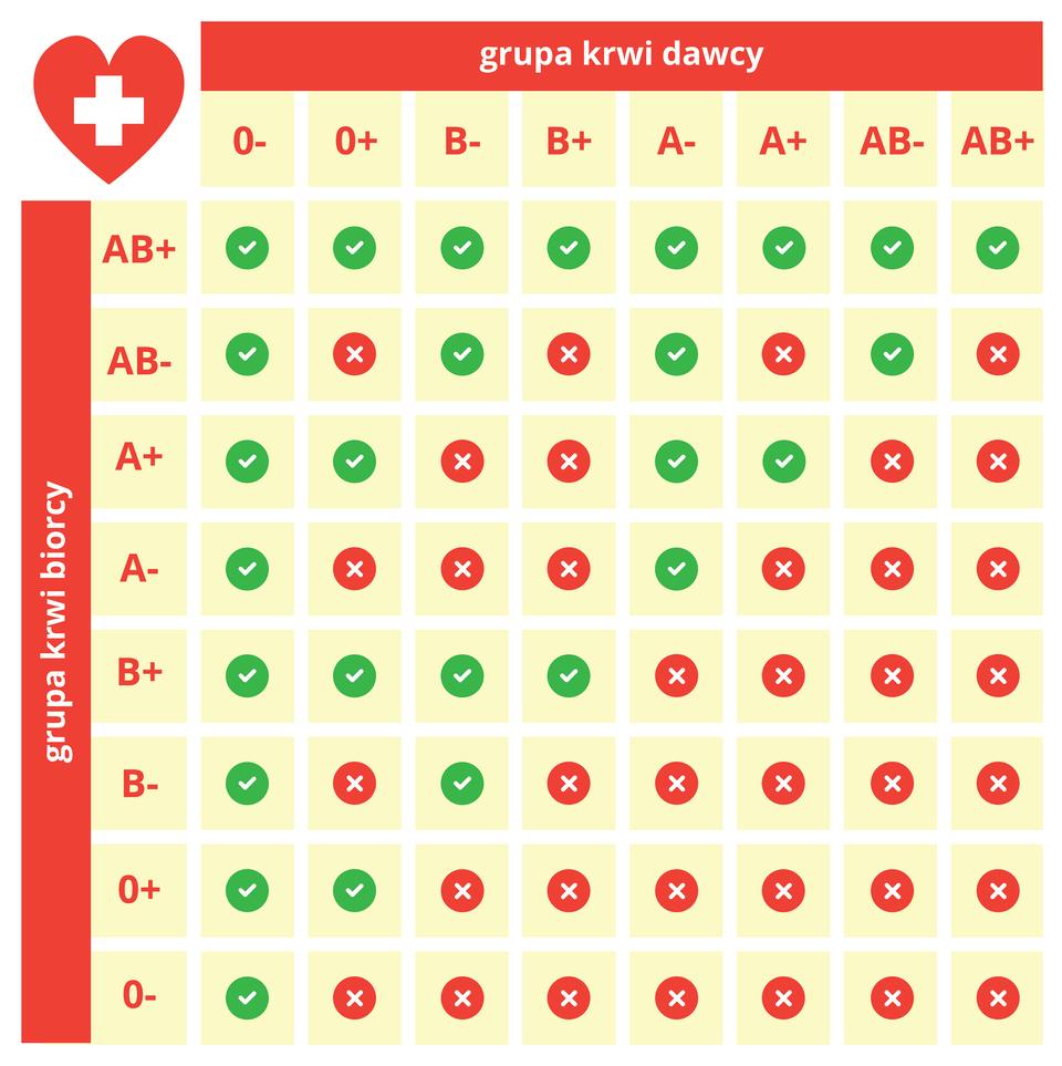 Ilustracja przedstawia tabelę zgodności grup krwi. Tabela ta jest przydatna do ustalenia możliwego dawcy krwi dla osoby potrzebującej transfuzji. Ugóry wypisano grupy krwi dawcy, zboku grupy krwi biorcy. Ptaszki wzielonym polu na przecięciu kolumny irzędu oznaczają możliwość transfuzji.