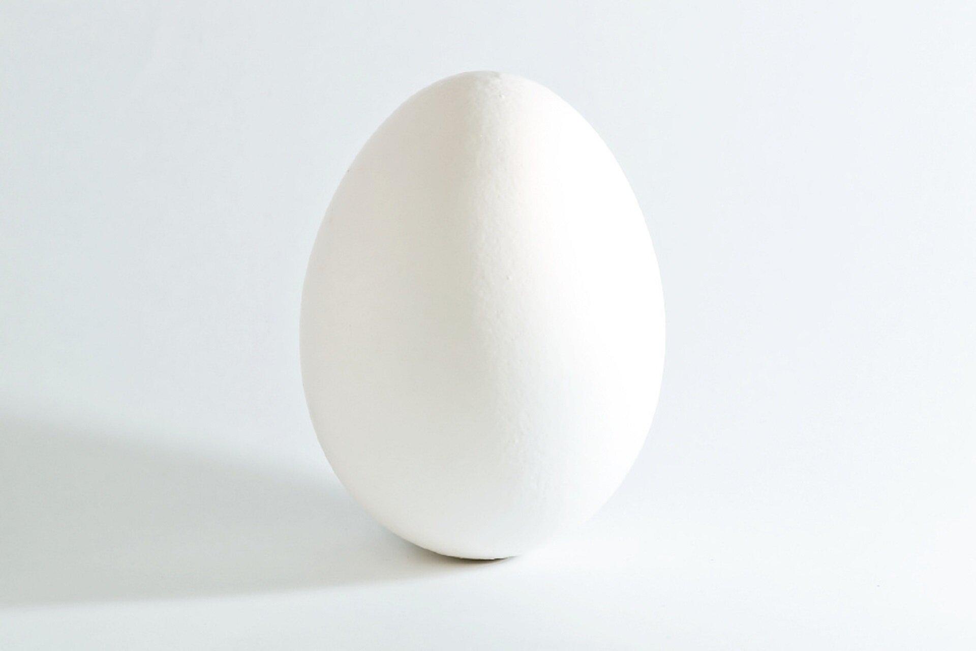 Fotografia nieznanego autora przedstawia białe jajko wpozycji pionowej. Ma ono gładką strukturę bez widocznych pęknięć. Zdjęcie zostało wykonane na białym tle.