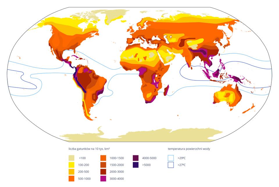 Ilustracja przedstawia kolorową mapę świata, obrazująca różnorodność gatunkową roślin naczyniowych. Barwy skali od żółtego do fioletowego wskazują coraz wyższą liczbę gatunków na 10 tysięcy kilometrów kwadratowych.