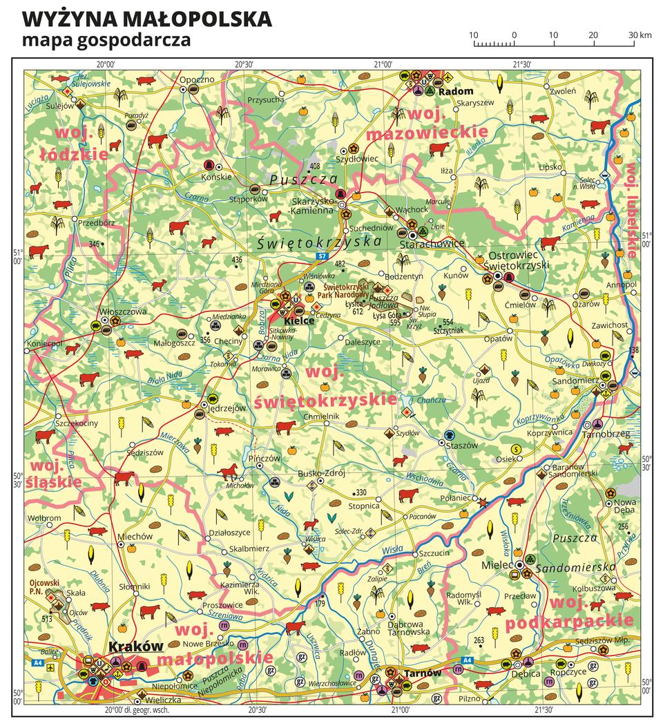 Ilustracja przedstawia mapę gospodarczą Wyżyny Małopolskiej. Tło mapy wkolorze żółtym (grunty orne), jasnozielonym (łąki ipastwiska) izielonym (lasy). Wśrodkowej części mapy Kielce. Mapa obejmuje tereny od Radomia na północy po Kraków iTarnów na południu. Na mapie sygnatury obrazujące uprawy poszczególnych roślin, hodowlę zwierząt, przemysł, górnictwo ienergetykę, komunikację, turystykę, naukę, kulturę isztukę. Największe zagęszczenie sygnatur wKrakowie, Tarnowie, Radomiu iKielcach. Duże zagęszczenie sygnatur wOstrowcu Świętokrzyskim, Starachowicach, Sandomierzu iMielcu. Na obszarze całej mapy rozmieszczone sygnatury hodowli iupraw. Na mapie przedstawiono sieć dróg ikolei, porty wodne ilotnicze, granice województw. Opisano województwa łódzkie, śląskie, świętokrzyskie, małopolskie, mazowieckie, podkarpackie ilubelskie. Opisano kompleksy leśne, na przykład Puszcza Świętokrzyska iparki narodowe.Mapa zawiera południki irównoleżniki, dookoła mapy wbiałej ramce opisano współrzędne geograficzne co trzydzieści minut.