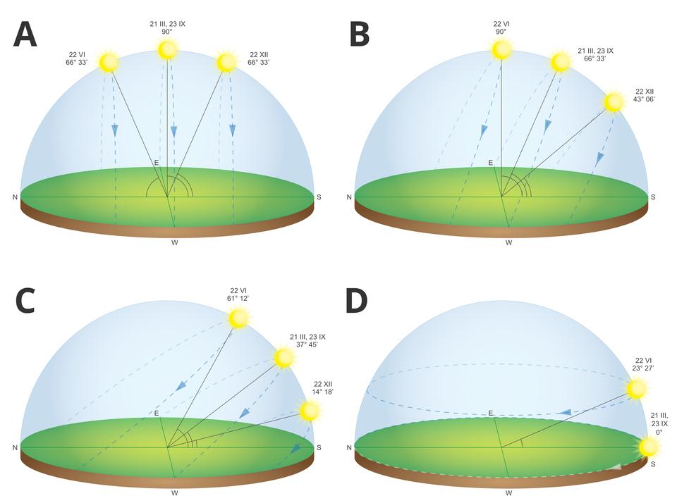 Ilustracja składa się zczterech rysunków. Każdy znich przedstawia zieloną okrągłą podstawkę. Nad podstawką jest półkolista przezroczysta kopuła. Na kopułach przerywanymi niebieskimi liniami narysowane są pozorne drogi Słońca po niebie. Są to drogi, jakie Słońce wykonuje 22 czerwca, 21 marca, 23 września i22 grudnia. Rysunek Aprzedstawia wędrówki Słońca widziane zmiejsca znajdującego się na równiku. Rysunek Bprzedstawia wędrówki Słońca widziane zmiejsca znajdującego się na zwrotniku Raka. Rysunek Cprzedstawia wędrówki Słońca widziane zWarszawy. Rysunek Dprzedstawia wędrówki Słońca widziane zbieguna północnego.