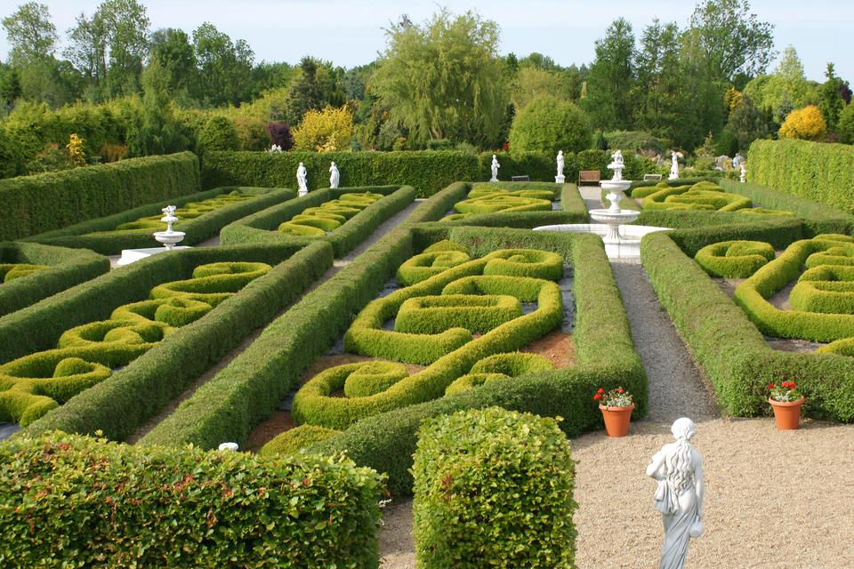 Fotografia prezentuje ogród francuski ze starannie formowanymi wzorami zroślin.