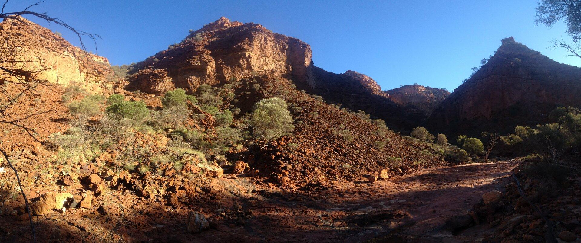Fotografia przedstawia krajobraz zachodniego wybrzeża Australii. Na pierwszym planie uschnięte drzewo na czerwonej, spękanej ziemi. Nieliczne krzewy itrawa wpobliżu wody zlewej. Wtle pas cienkich drzew oniewielkich koronach.
