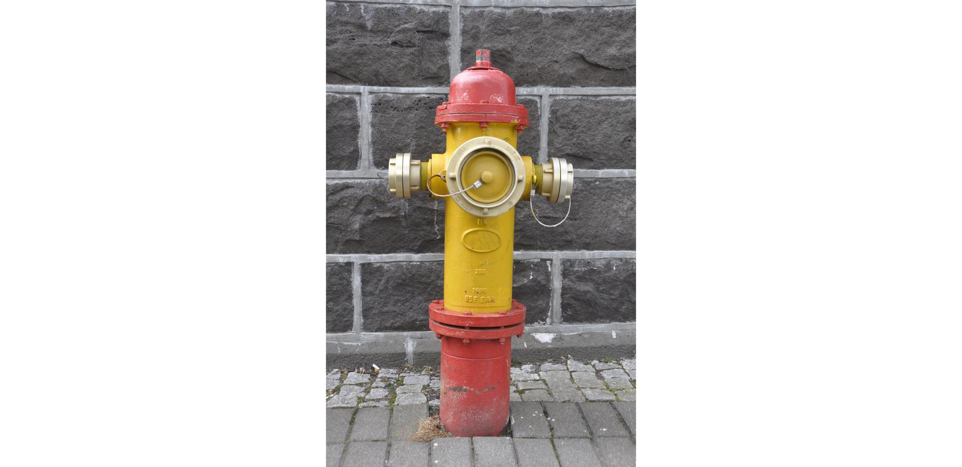 Ilustracja przedstawia hydrant nadziemny.