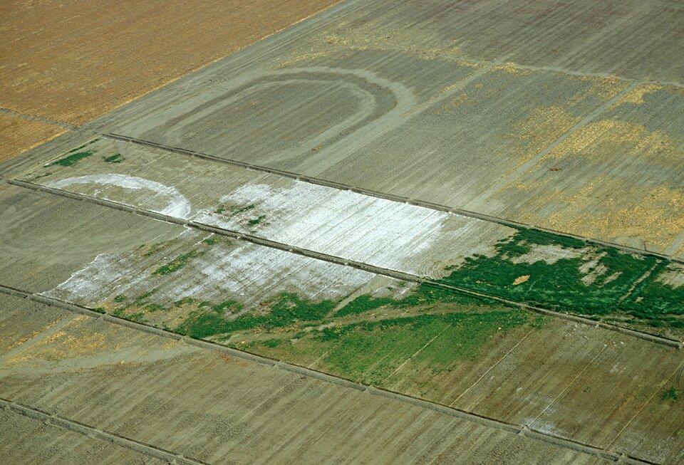 Na zdjęciu zaorane pola uprawne oregularnym kształcie. Wśrodkowej części pokryte białym nalotem.