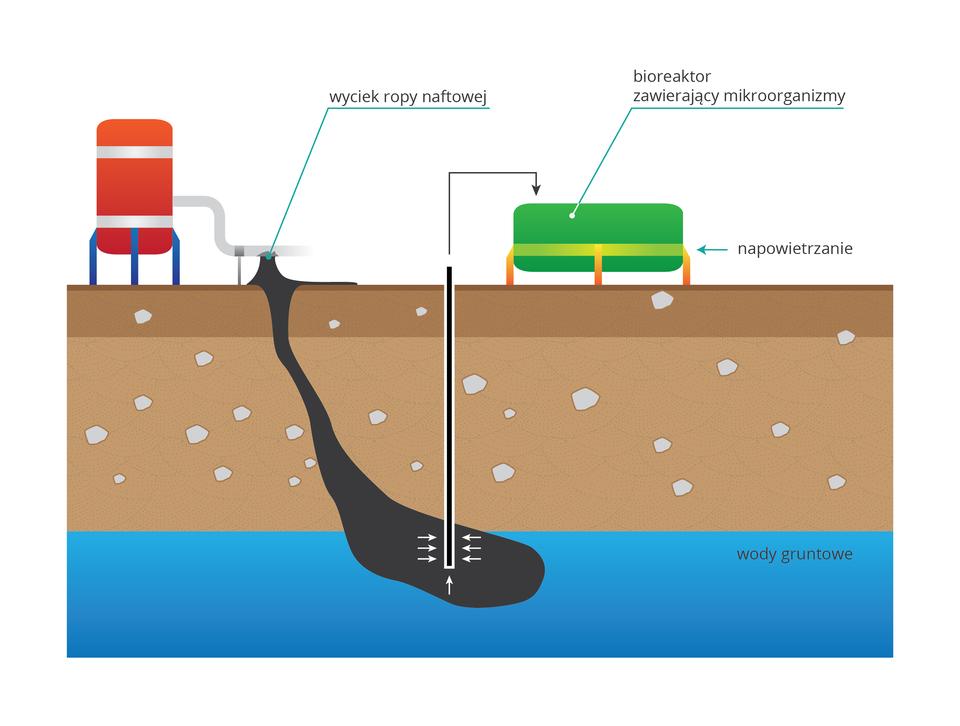 Ilustracja przestawia prostokąt, podzielony poziomo na trzy pasy, od dołu: niebieski, jasno brązowy, brązowy. Zlewej stoi urządzenie wkolorze czerwonym zbiałymi elementami. Od niego wdół spływa duża, czarna plama, oznaczająca wyciek ropy naftowej do ziemi iwód podziemnych. Wcentralnej części ilustracji pionowa, cienka rurka obrazuje wysysanie ropy zwody. Strzałka wskazuje, że ropa trafia do zielonego kontenera, bioreaktora, gdzie jest rozkładana.