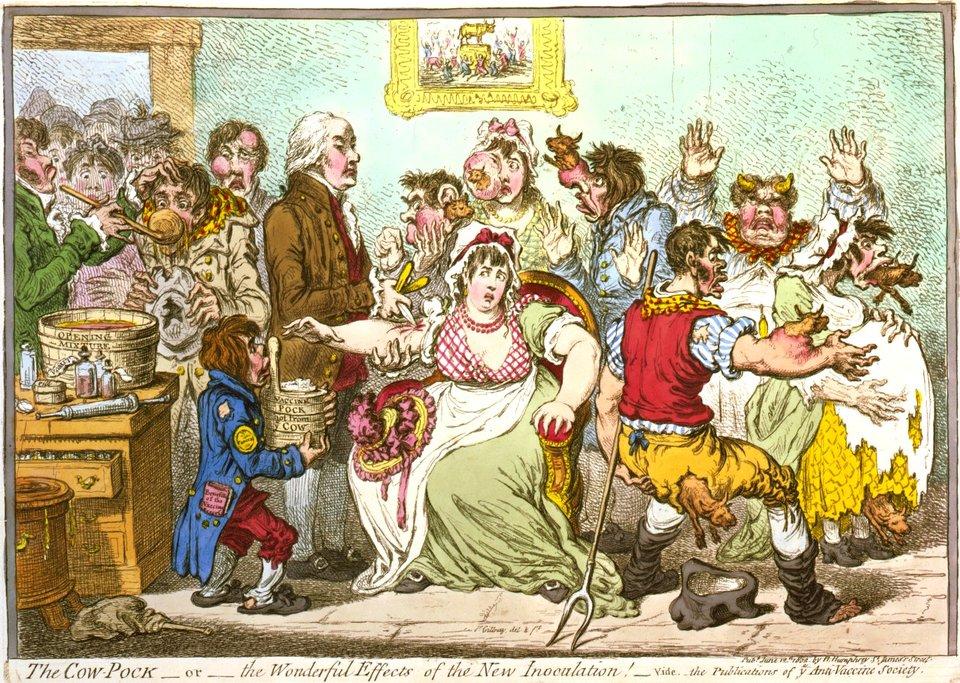 """Karykaturana temat obaw przed szczepieniami """"krowią ospą"""" (krowianką), XVIII w. Satyra była dziełem znanego rysownika zprzełomu XVIII iXIX w. Jamesa Gillraya. Centralną postacią rysunku jest sam Jenner, dokonujący szczepienia starszej kobiety. Wtym czasie miała miejsca ostra dyskusja, aczęść ówczesnych lekarzy nie podzielała poglądów, że szczepienia zapobiegają zachorowaniu na niezwykle groźną ospę prawdziwą (wg szacunków ok. 50 % zarażonych umierało). Karykatura pokazywała rzekome zgubne efekty szczepienia krowianką – pacjenci nabywali bydlęcych atrybutów. Karykaturana temat obaw przed szczepieniami """"krowią ospą"""" (krowianką), XVIII w. Satyra była dziełem znanego rysownika zprzełomu XVIII iXIX w. Jamesa Gillraya. Centralną postacią rysunku jest sam Jenner, dokonujący szczepienia starszej kobiety. Wtym czasie miała miejsca ostra dyskusja, aczęść ówczesnych lekarzy nie podzielała poglądów, że szczepienia zapobiegają zachorowaniu na niezwykle groźną ospę prawdziwą (wg szacunków ok. 50 % zarażonych umierało). Karykatura pokazywała rzekome zgubne efekty szczepienia krowianką – pacjenci nabywali bydlęcych atrybutów. Źródło: James Gillray, 1802, Biblioteka Kongresu USA, domena publiczna."""