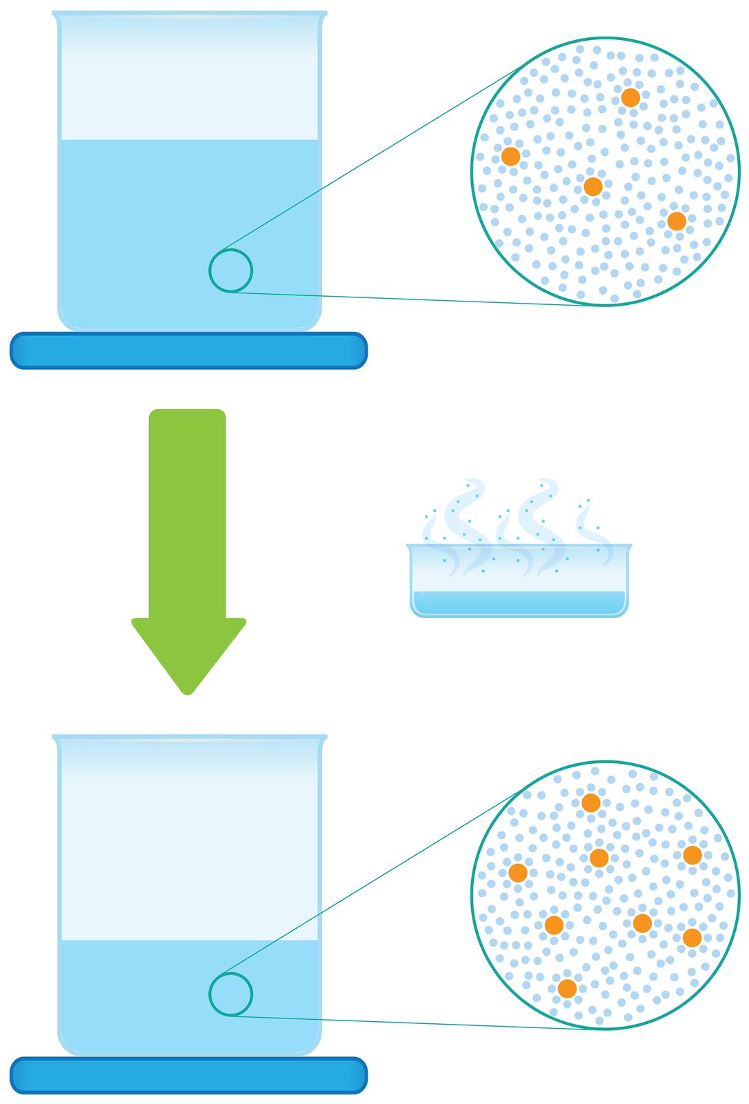 Ilustracja przedstawia proces zagęszczania roztworu poprzez odparowanie. Składa się zdwóch rysunków umieszczonych jeden nad drugim. Na rysunku górnym stojąca na niebieskiej podkładce zlewka napełniona jest wdwóch trzecich roztworem. Wobszarze roztworu małym kółkiem wyróżniono niewielki fragment iumieszczono po prawej stronie połączone znim dwiema liniami duże koło stylizowane na mikroskopowe powiększenie tego obszaru. Wkole widoczne są duże pomarańczowe kule symbolizujące cząstki rozpuszczonej substancji wliczbie czterech sztuk otoczone przez liczne małe niebieskie kulki symbolizujące cząsteczki wody. Poniżej, pośrodku ilustracji znajduje się gruba zielona strzałka skierowana wdół obok której umieszczono rysunek szerokiego ipłytkiego naczynia, zktórego unoszą się kłęby pary. Poniżej, na rysunku dolnym ponownie obraz zlewki stojącej na niebieskiej podkładce ze zbliżeniem fragmentu zawartości. Tym razem zlewka napełniona jest wjednej trzeciej, ana powiększeniu cząsteczek substancji rozpuszczonej wwodzie jest dwa razy więcej.