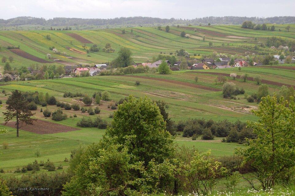 Na zdjęciu pofałdowane tereny rolnicze, zabudowania, drzewa.