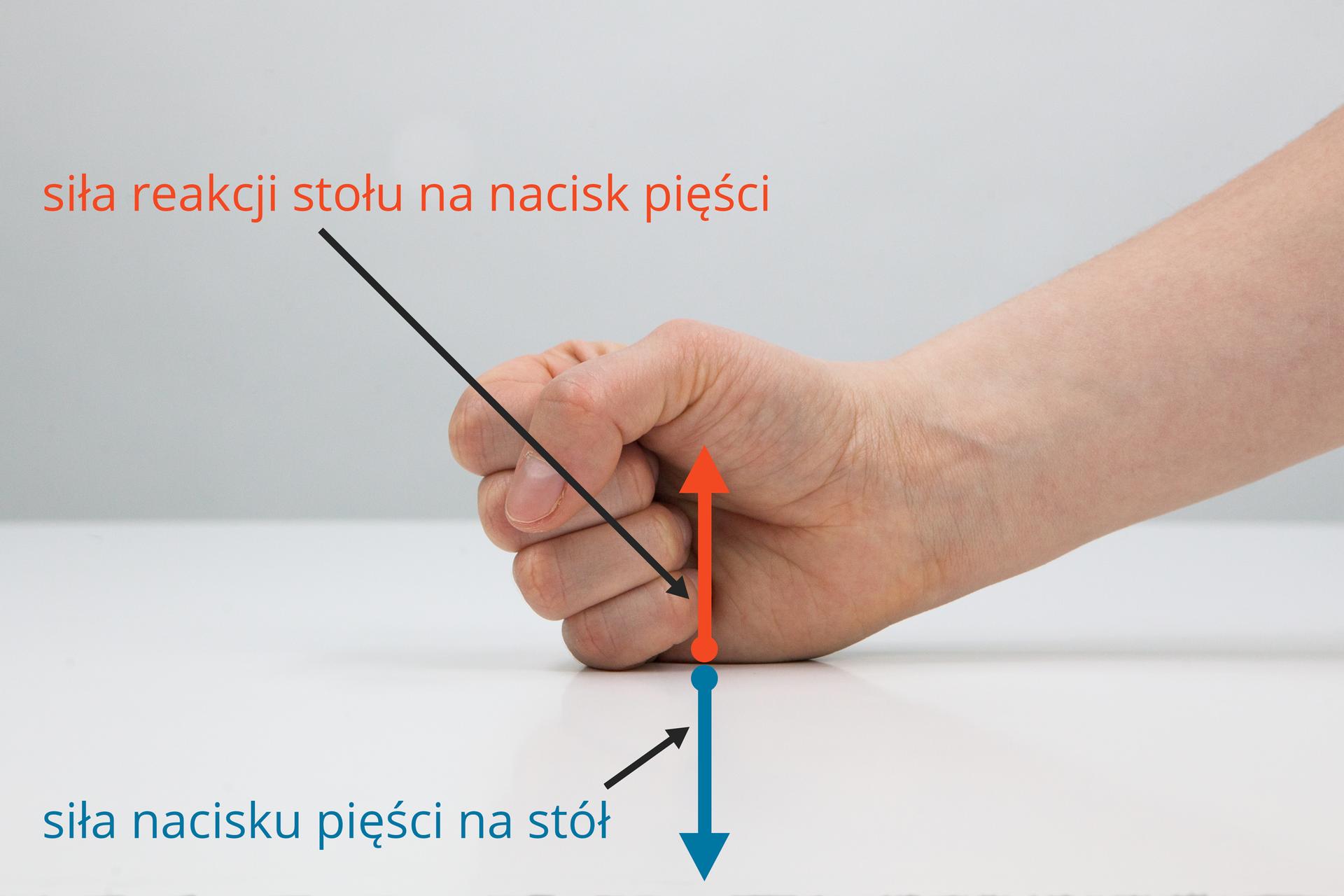 Zdjęcie ilustrujące zasadę akcji ireakcji na przykładzie nacisku dłoni na blat stołu.