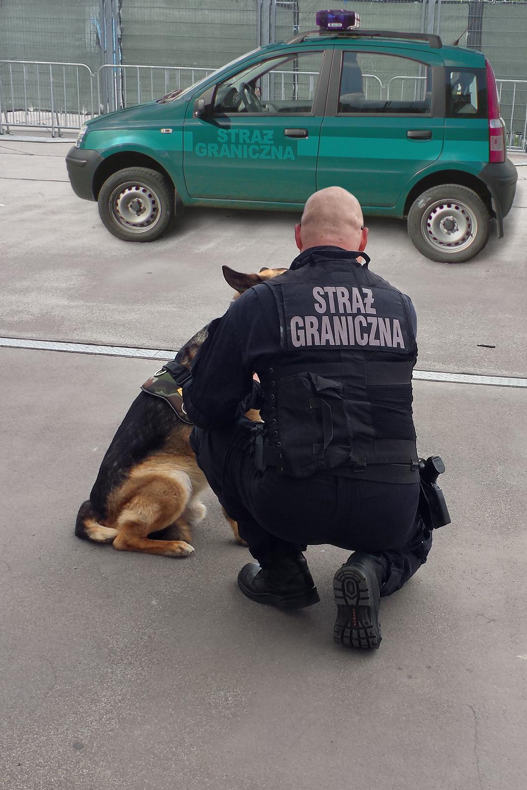 Kolorowe zdjęcie przedstawia funkcjonariusza straży granicznej. Funkcjonariusz przykucnął obok psa na ulicy, obok pobocza. Mężczyzna tyłem do obserwatora zdjęcia. Ubrany wczarny mundur służbowy. Na plecach napis Straż Graniczna. Na lewo, przed funkcjonariuszem, siedzi owczarek niemiecki. Wgłębi zdjęcia stoi mały zielony zaparkowany samochód. Na przednich drzwiach kierowcy napis: straż graniczna.