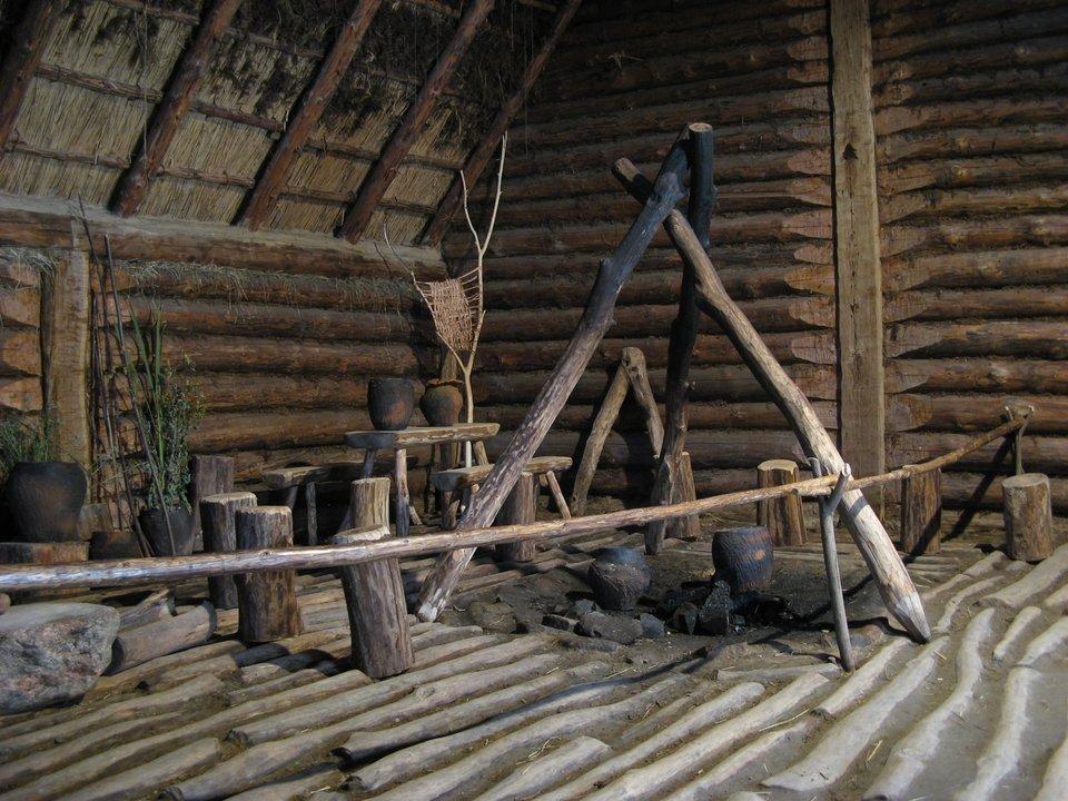 Rekonstrukcja jednej zwielu chat wBiskupinie Rekonstrukcja jednej zwielu chat wBiskupinie Źródło: Ludek, Wikimedia Commons, licencja: CC BY-SA 3.0.