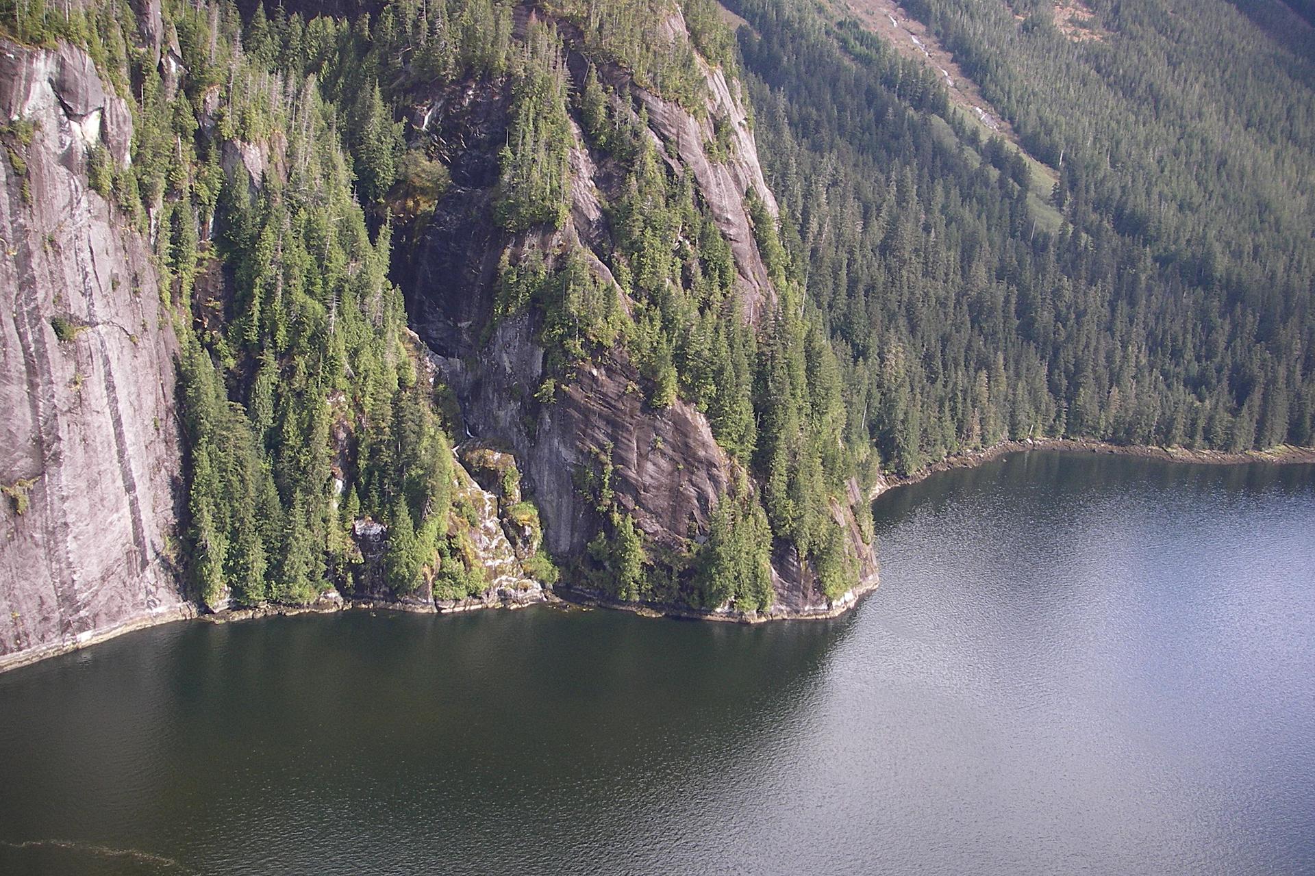 Fotografia przedstawia skalne zbocze nad wodą. Na zboczu rosną świerki, zabezpieczając glebę przed osuwaniem.