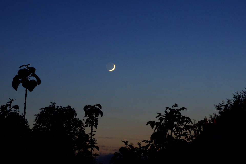 Zdjęcie przedstawia Księżyc. Udołu fotografii widać zarys podłoża oraz drzew. Niebo ciemne, granatowe. Na środku widoczny Księżyc wkształcie sierpa.