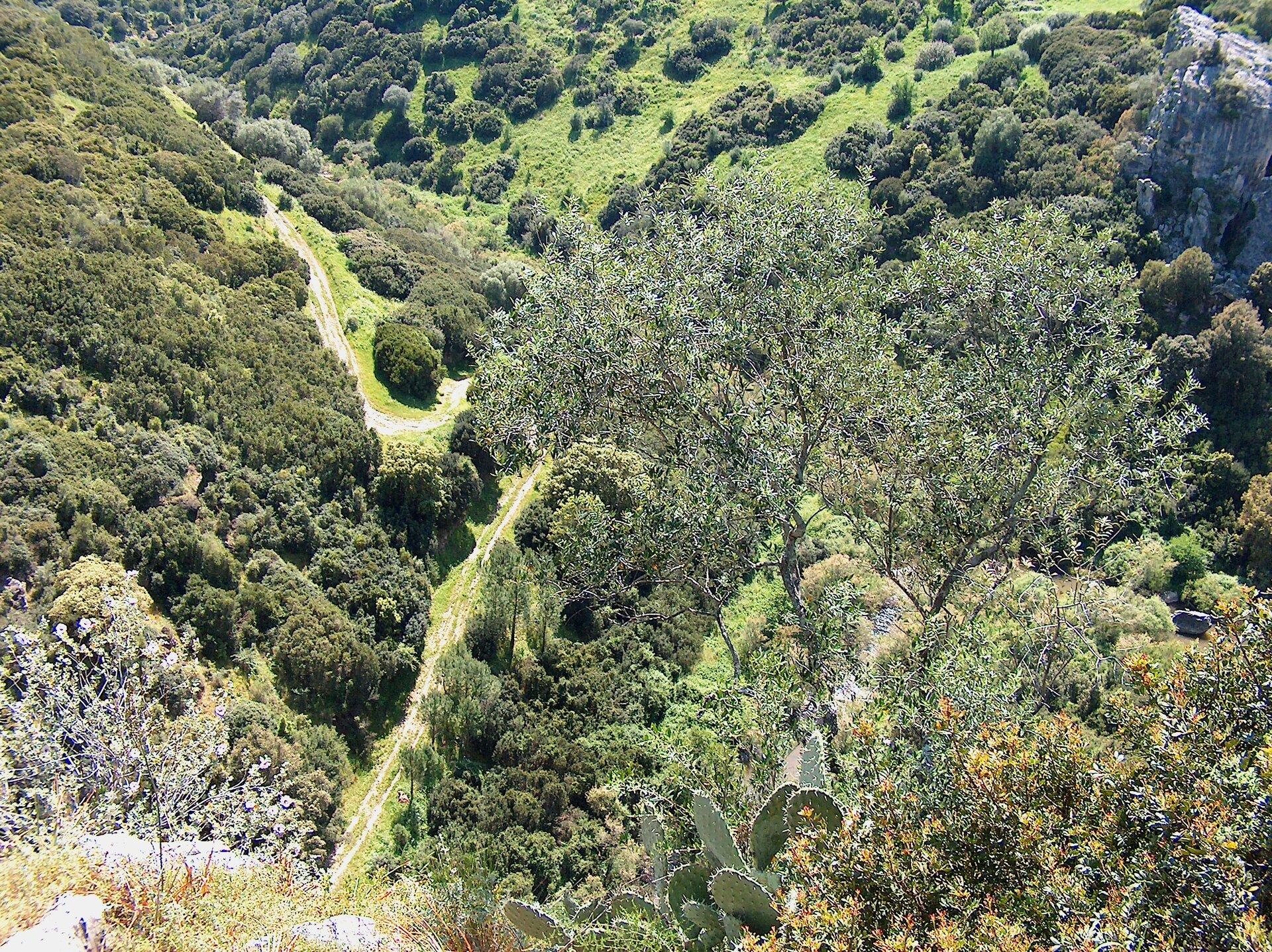 Zdjęcie przedstawia krajobraz śródziemnomorski. Na zdjęciu dolina porośnięta krzaczastą, sucholubną roślinnością.