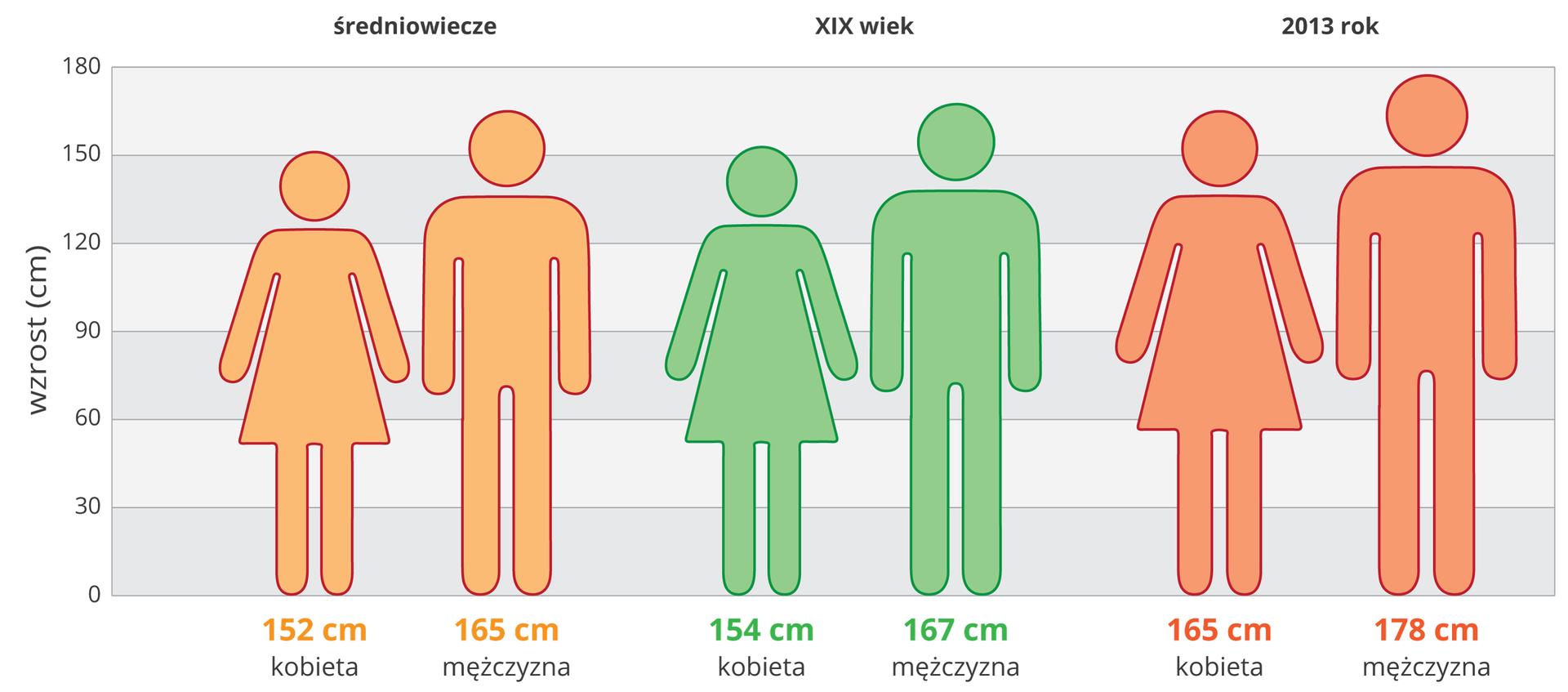 Ilustracja przestawia schematycznie porównanie wzrostu ludzi wróżnych wiekach. Diagram ma szare ibiałe pasy, oszerokości 30cm, od 0 do 180cm. Podpisane zlewej wzrost wcentymetrach. Pomarańczowe sylwetki ludzi ze średniowiecza. Kobieta 152 cm, mężczyzna 165 cm. Zielone sylwetki ludzi zdziewiętnastego wieku. Kobieta wzrost 154 cm, mężczyzna 167 cm. Czerwone sylwetki ludzi współczesnych, kobieta 165 cm, mężczyzna 178 cm.