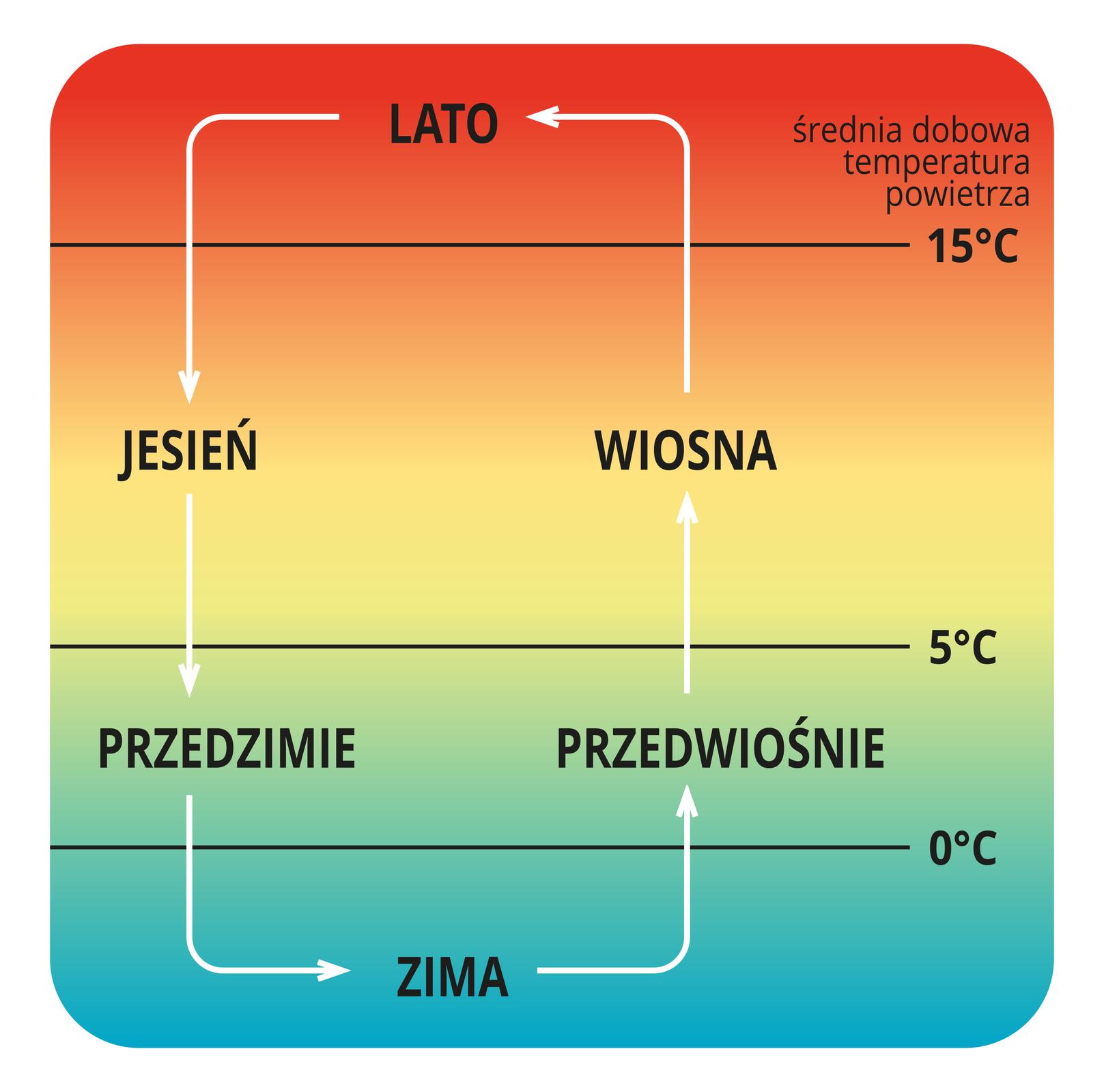 Na ilustracji schemat pór roku lato, jesień, przedzimie, zima, przedwiośnie, wiosna. Oznaczona średnia dobowa temperatura powietrza dla poszczególnych pór roku.
