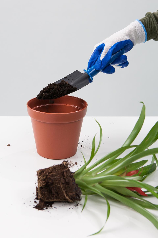 Slajd 5 – demonstrator wrękawiczkach nasypuje łopatką ziemie do doniczki