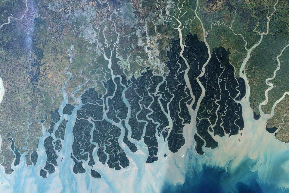 Zdjęcie satelitarne delty rzecznej. Liczne odnogi. Naniesione osady zabarwiają wodę wmorzu na jaśniejszy kolor.