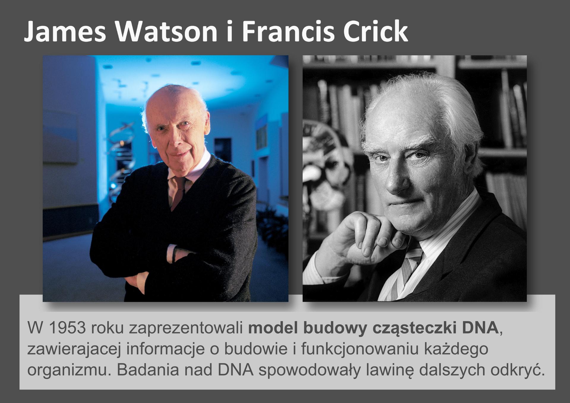 Galeria przedstawia pionierów nauk przyrodniczych. Składa się zdziewięciu slajdów wpostaci ilustracji iumieszczonego obok opisu. Ilustracje pojawiają się kolejno, kiedy klika się wstrzałki, znajdujące się po prawej ilewej stronie ilustracji. Ostatni slajd to fotografie dwóch uśmiechniętych, angielskich uczonych: Jamesa Watsona iFrancisa Cricka. W1953 roku zaprezentowali model budowy cząsteczki DNA, co zapoczątkowało wiele nowych odkryć.