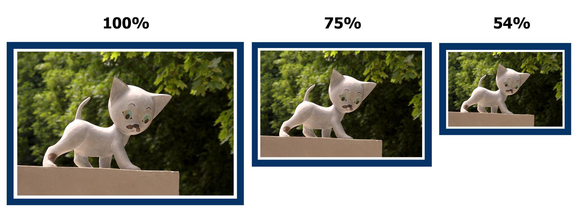 Rysunek trzech tych samych zdjęć wróżnych wymiarach: wskali 100%, 75% oraz 54%.