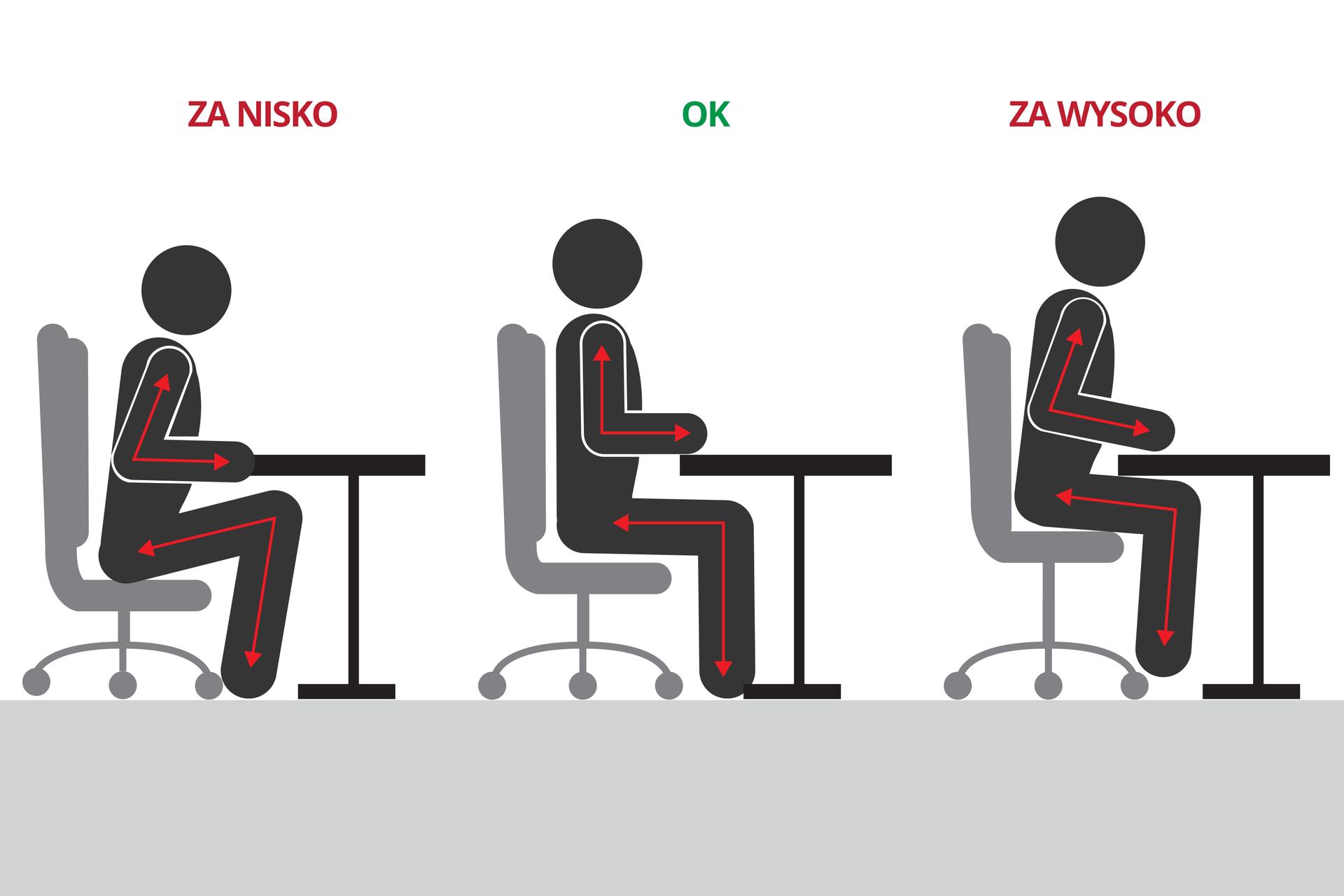 Galeria zawiera 3 plansze zilustracjami na temat pozycji ciała podczas nauki. Ilustracja przedstawia 3 schematyczne czarne sylwetki człowieka, siedzącego na szarym fotelu przy biurku. Wsylwetki wrysowano czerwone strzałki, obrazujące kąt zgięcia wstawie. Rysunek zlewej: za nisko. Kolana mocno zgięte, tułów pochylny, łokcie do tyłu. Rysunek środkowy: prawidłowo. Wstawach kąty proste, plecy na oparciu fotela. Rysunek zprawej: za wysoko. Kolana rozwarte, łokcie do tyłu, tułów pochylony.