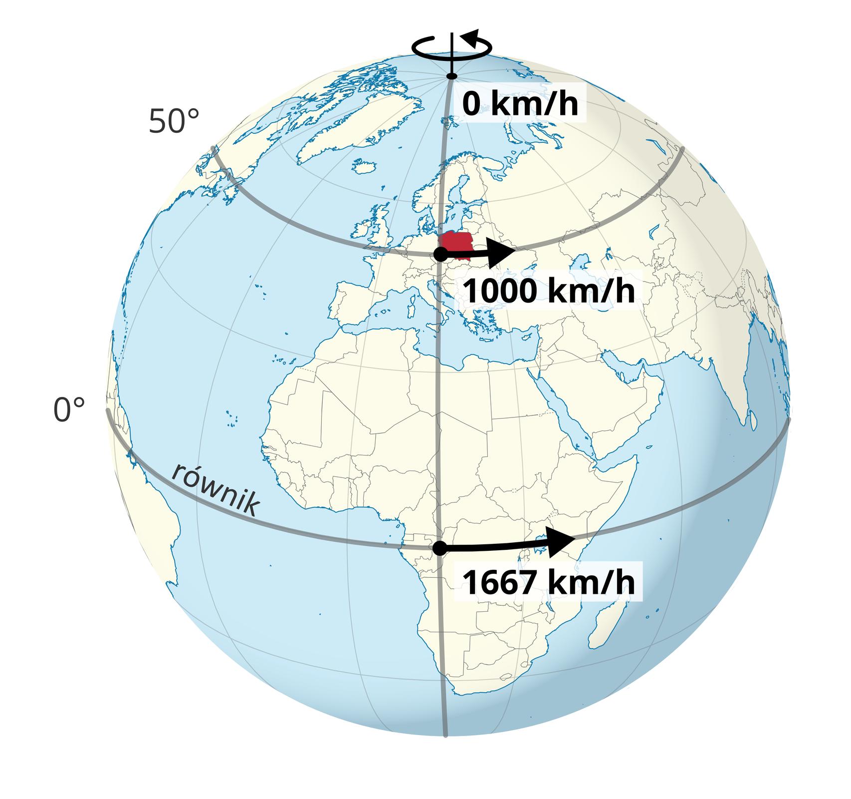 Ilustracja przedstawia kulę Ziemską. Na kuli są lekko zaznaczone południki irównoleżniki. Na powierzchni kuli kolor niebieski wskazuje powierzchnię oceanów imórz. Powierzchnia kontynentów biała. Granice poszczególnych państw zarysowane czarną linią. Dokładnie wpołowie, poziomo, kulę dzieli czarna linia równika. Powyżej pogrubiony równoleżnik pięćdziesiąt stopni szerokości geograficznej północnej przebiegający przez Europę iPolskę. Południk piętnasty długości geograficznej wschodniej jest pogrubiony. Przebiega przez zachodnie krańce Polski. Wmiejscu przecięcia tego południka zrównikiem czarna strzałka skierowana grotem wprawo. Strzałka pokrywa linię równika na długości około dwóch centymetrów. Poniżej informacja: tysiąc sześćset sześćdziesiąt siedem kilometrów, ukośnik, na godzinę. Wmiejscu przecięcia pogrubionego południka zpogrubionym równoleżnikiem także znajduje się strzałka zgrotem skierowanym wprawo. Strzałka pokrywa linię równoleżnika na długości około jednego centymetra. Poniżej informacja: tysiąc kilometrów, ukośnik, na godzinę. Na biegunie północnym czarny punkt. Przy nim napis: zero kilometrów, ukośnik, na godzinę.