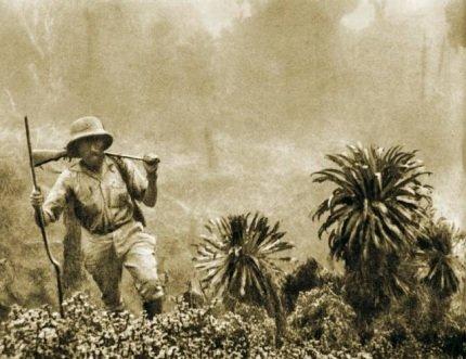 Droga przez dżunglę Droga przez dżunglę Źródło: Kazimierz Nowak, 1931–1936.