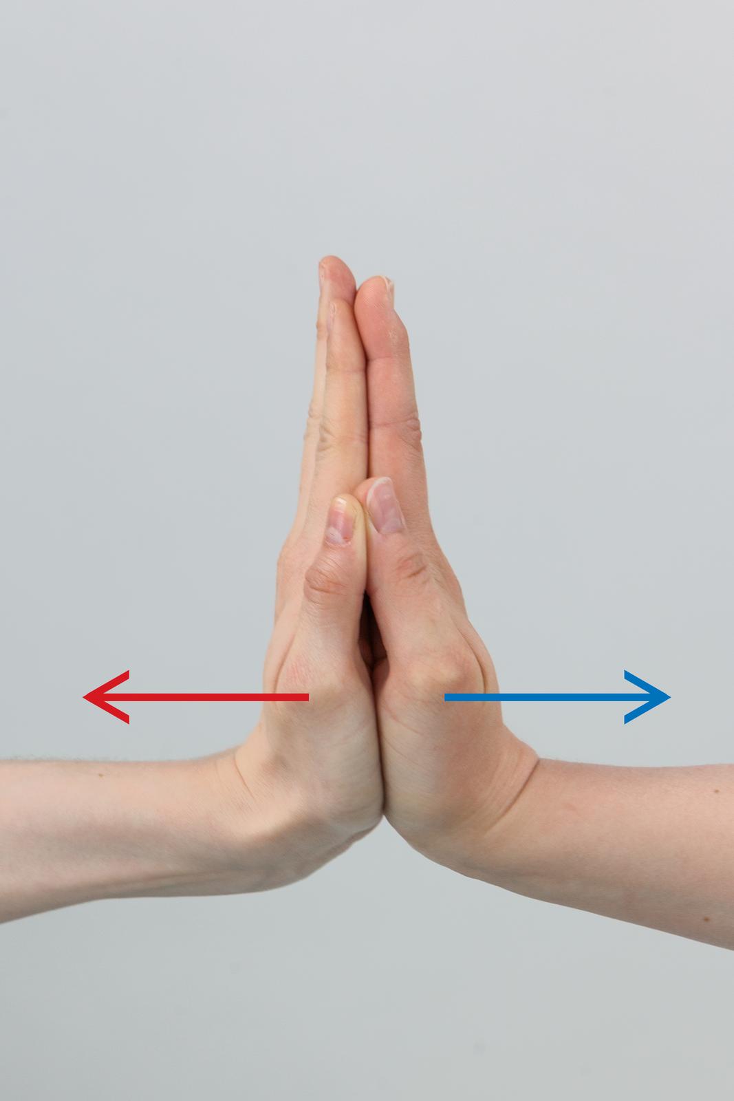 Zdjęcie przyłożonych do siebie dłoni zdwoma wektorami, które są przeciwne do siebie