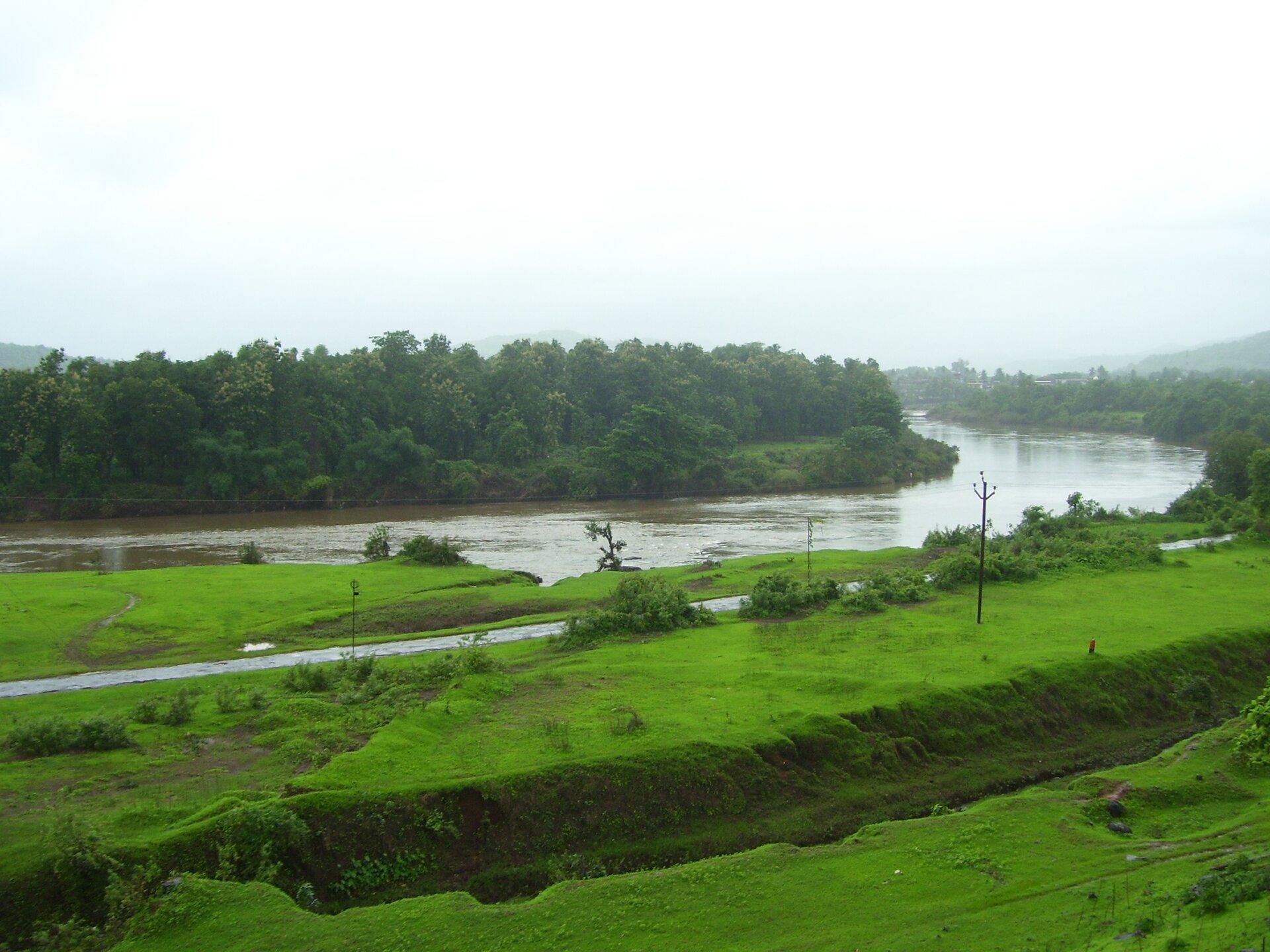 Na zdjęciu szeroka rzeka, jeden brzeg zalesiony, drugi brzeg porośnięty bujną trawą.