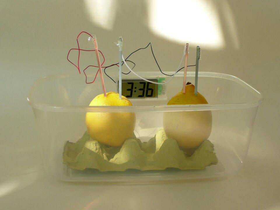 Fotografia przedstawia plastikowe przezroczyste pudełko, wktórym stworzono baterię zcytryny. Na podkładce zpapierowego opakowania po jajkach ustawiono dwie cytryny, wktóre wbito patyczki połączone ze sobą przewodem.