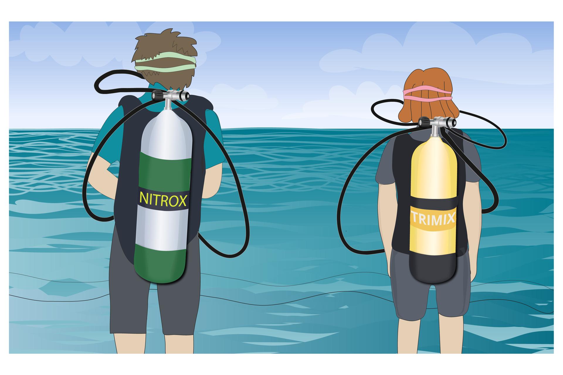 Ilustracja stanowi rysunek przedstawiających od tyłu dwoje nurków stojących nad brzegiem morza. Oboje ubrani są wstroje do nurkowania imają na plecach aparaty, ana twarzach maski do nurkowania, których paski widać ztyłu głów. Po lewej stronie wyższy chłopak lub młody mężczyzna ma na plecach zielono srebrną butlę znapisem NITROX. Po prawej stronie niższa rudowłosa dziewczyna ma na plecach żółtą butlę znapisem TRIMIX.