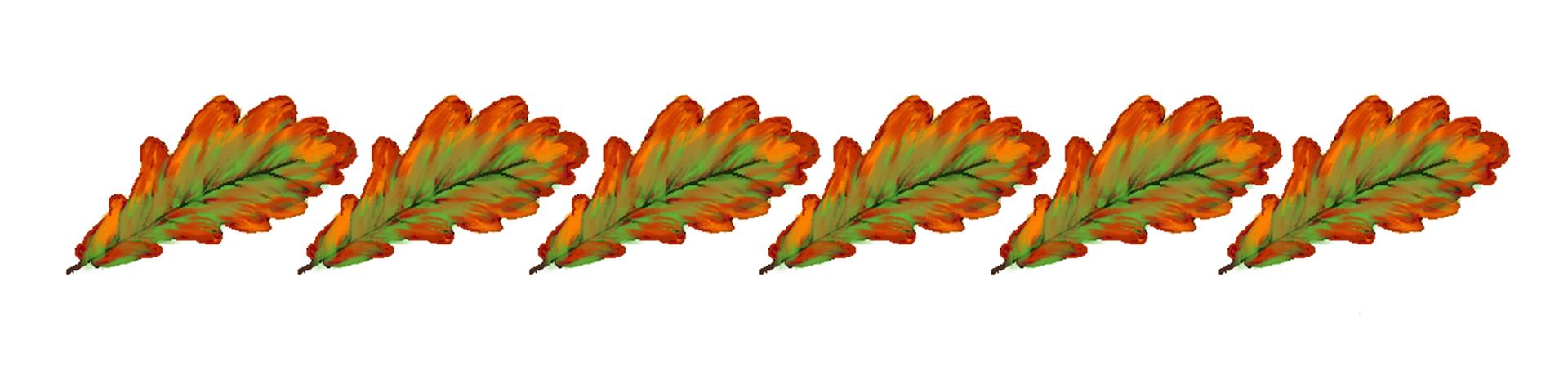 Ilustracja przedstawiająca ornament zjesiennych liści